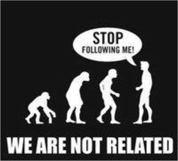 Relative Evolution